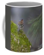 Male Common Chaffinch  Coffee Mug