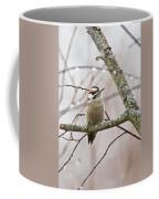 Male Downey Woodpecker Coffee Mug