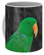 Male Eclectus Coffee Mug