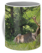 D10271-male Elk 2  Coffee Mug