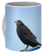 Male Grackle Coffee Mug