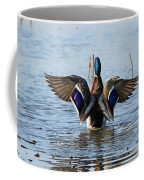 Male Mallard In Glorious Color  7515 Coffee Mug