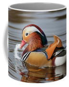 Male Mandarin Duck Coffee Mug