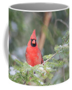 Male Northern Cardinal 2 Coffee Mug