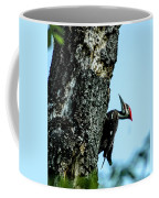 Male Pileated Woodpecker Coffee Mug