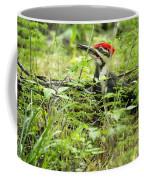 Male Pileated Woodpecker On The Ground No. 2 Coffee Mug
