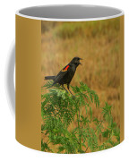 Male Red-winged Blackbird Singing Coffee Mug