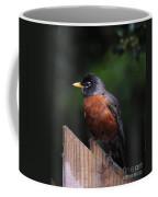 Male Robin Coffee Mug