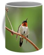 Male Ruby Throated Hummingbird Coffee Mug