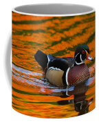 Male Wood Duck, Aix Sponsa, Swimming Coffee Mug by Darlyne A. Murawski