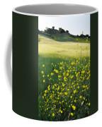 Malibu Creek Wildflowers Coffee Mug
