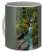 Maligne Canyon Falls Jasper National Park Coffee Mug