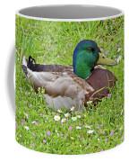 Mallard Drake In The Grass Coffee Mug