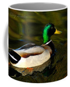 Mallard Green Coffee Mug
