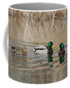 Mallards On The Pond Coffee Mug