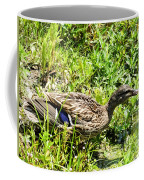 Mama Duck On Guard Coffee Mug