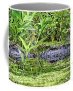 Mama Gator With Babies Coffee Mug