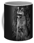 Mama Raccoon Coffee Mug