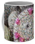 Mammillaria Cactus With Small Flowers Coffee Mug