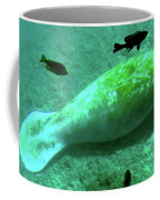 Manatee And Friends Viewed From Glass Bottom Boat At Silver Springs Coffee Mug