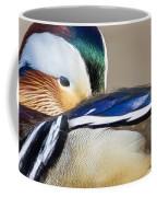 Mandarin Closeup Coffee Mug