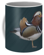 Mandarin Duck II Coffee Mug