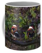 Mandarin Ducks Coffee Mug