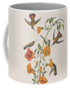 Mango Humming Bird Coffee Mug