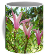 Mangolia Tree Flowers Art Prints Pink Magnolias Baslee Troutman Coffee Mug