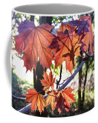 Maple Coffee Mug