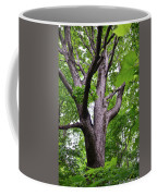 Maple Branches Coffee Mug