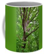 Maple Hand Coffee Mug
