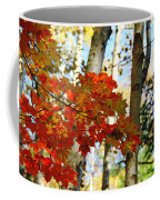 Maple Leaves And Birch Bark Coffee Mug