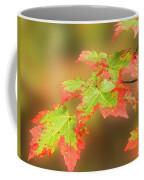 Maple Leaves Changing Coffee Mug