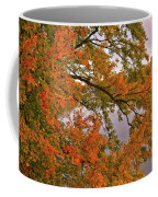 Maple Over The River Coffee Mug