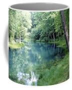 Maramec Springs 1 Coffee Mug
