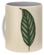 Maranta Porteana Coffee Mug