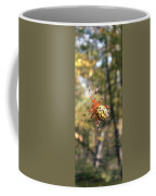 Marbled Orb Weaver Coffee Mug