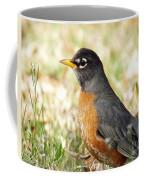 March Robin Coffee Mug