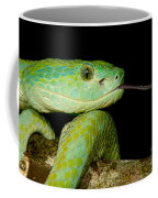 Marchs Palm Pitviper Coffee Mug