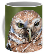 Marco Burrowing Owl - I Know What You're Thinking Coffee Mug
