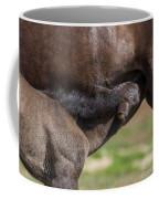Mare And Foal, Icelandicelandic Coffee Mug