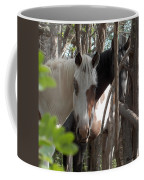 Mares In Trees Coffee Mug