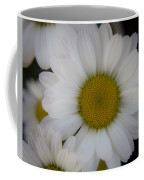 Marguerite Daisies Coffee Mug