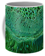 Marijuana Stem, Cannabis Sativa, Sem Coffee Mug