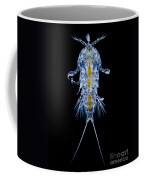 Marine Copepod, Lm Coffee Mug
