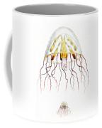 Marine Mollusc Divulging Fish Coffee Mug