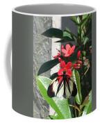 Marisposa Coffee Mug