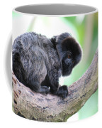 Marmoset Sitting Perched In A Tree Coffee Mug