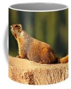 Marmot Life Coffee Mug